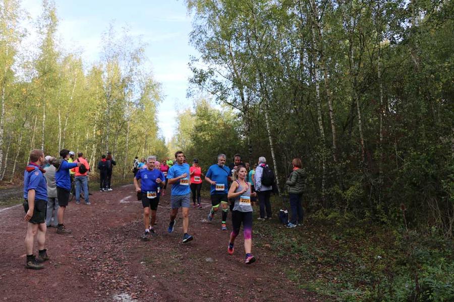 Plusieurs parcours, à travers la forêt, étaient proposés aux participants.