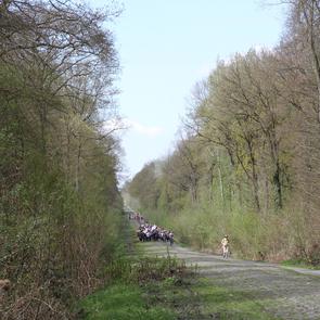 La trouée d'Arenberg fait partie des chemins vers Saint-Jacques-de-Compostelle